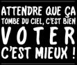 ATTENDRE QUE CA TOMBE DU CIEL C BIEN VOTEZ C MIEUX